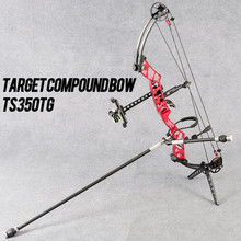 Topoint Archery Target Compound bow TS350TG shooting left and right handed can be selecte,it is bare without accessories