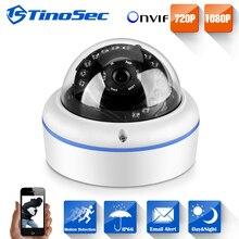 TinoSec 3.6MM 1080P IP Camera HD 2.0MP Vandal/waterproof IP66 Network CCTV Camera 22leds In/outdoor Dome ONVIF2.0 IP Camera