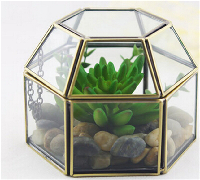 Vintage Hexagonal Glass Box And Garden Glass Terrariums