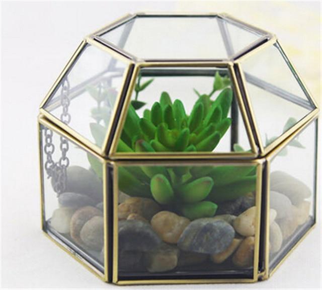 Vintage Hexagonal Glass Box And Garden Glass Terrariums Glass