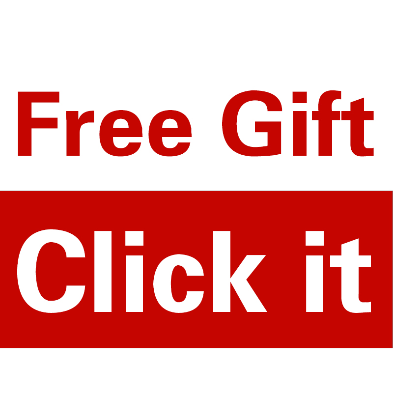Free gift promotion on 2017 on NewPal Ali store Earphone flashlight car holder car charge package