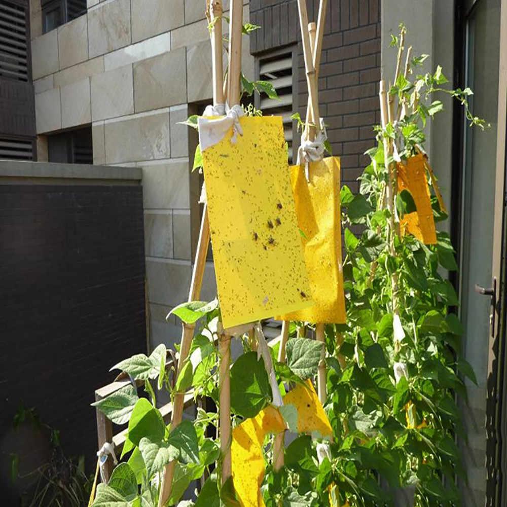 1pcs Sterke Vliegt Vallen Bugs Sticky Board Catching Bladluis Insecten Pest Killer Outdoor Fly Trap voor Bladluizen Schimmel #10