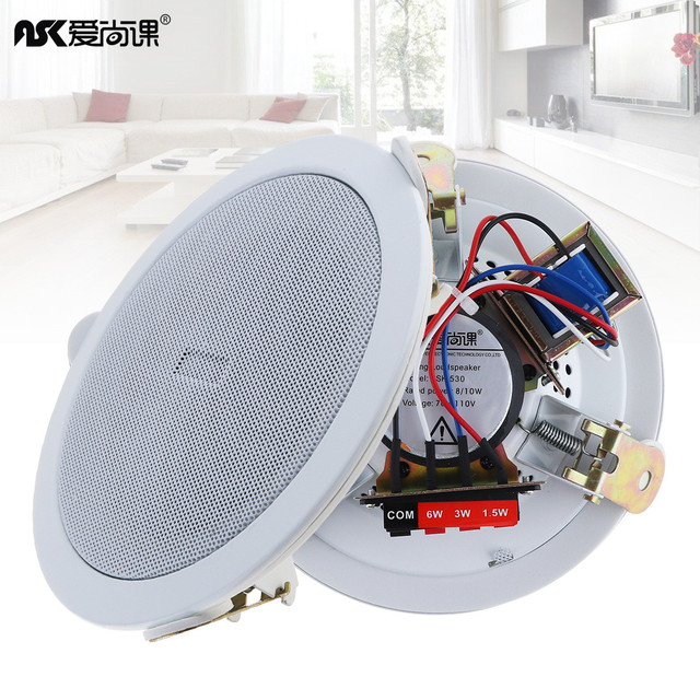 5 Inch 10W Fashion Metal Microphone Input USB MP3 Player Ceiling Speaker Public Broadcast Background Music Loudspeaker for Home