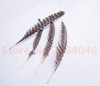 20 wortel 25-30 cm/10-12 inch real natuurlijke zwart-wit punt bloem kalkoenveer sieraden kleding craft bulk sales