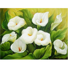 Moge 5D DIY diamond painting flowers calla lily Diamond embroidery full Mosaic Painting