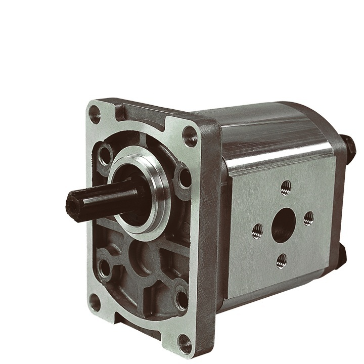 ФОТО Hydraulic gear pump CBT-F308FHL-FT SDH high pressure oil pump