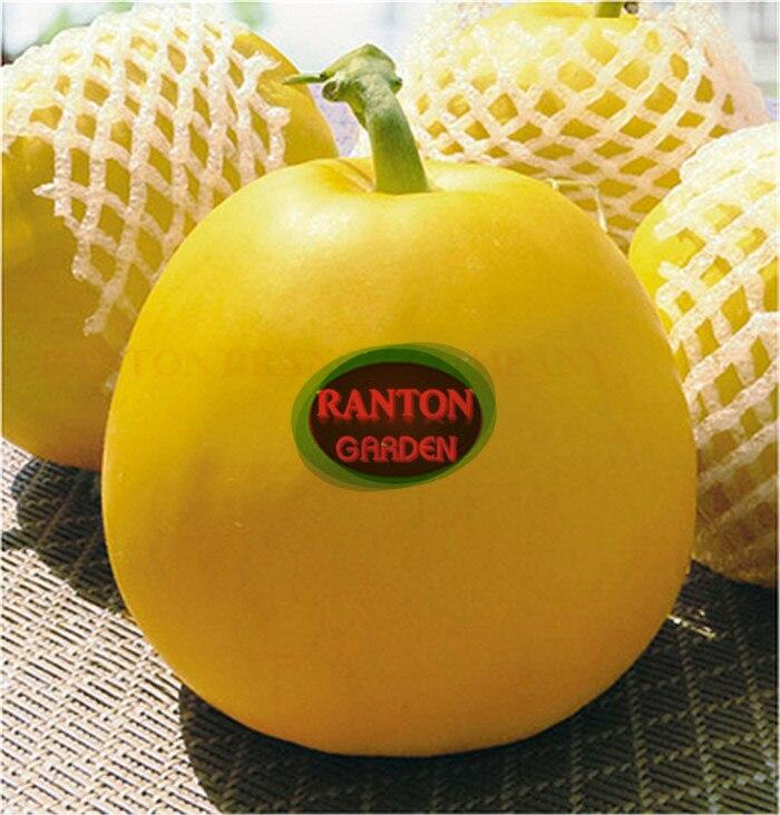 1 Pack 400 pieces Swift melon seeds, golden skin Hami melon fruit Seeds green vegetable seeds for planting