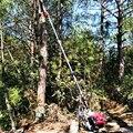 Принудительное воздушное охлаждение длинная бензиновая бензопила  4-тактная телескопическая пилка для пилы  кусторез для дерева  секатор 3 5...