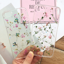 Tfshining Real Dried Flowers Phone Case For On iPhone X XS Max XR 7 8 6 6S Plus Clear Soft TPU Silicone Floral Back Cover Fundas
