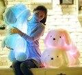 Led de colores juguetes de peluche / con la música y el sonido / emisor de luz almohada / perro de la alta calidad