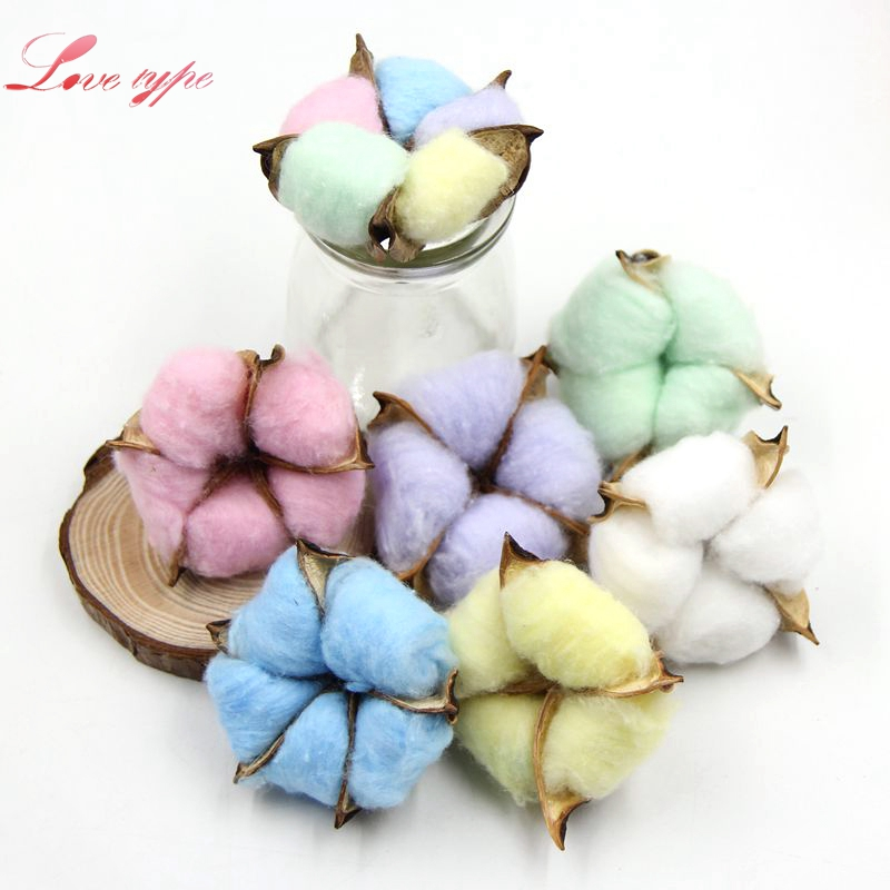 5PCS Colorful Natural Dried Cotton Flower Heads DIY Crafts Dried Pressed Flowers For Home Wedding Party DIY Gifts Decoration thumbnail