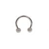 Starbeauty 2 sztuk Mix kolor 16G miernik 3mm 316L ze stali chirurgicznej Piercing podkowy okrągłe pierścienie dla nos brwi wargi ucha stadniny