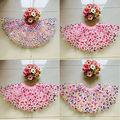 2016 Hot Sale Falda Retail Girls Skirts Trade Explosion Models Baby Skirt Girl Pettiskirt Cake Ballet Tutu Clothing Dance 3-8t