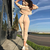 Women Autumn Winter Sporting Tracksuits Female Cropped Hooded Hoodies Sexy Back Zippers High Waist Sweatpants 2 Piece Sets