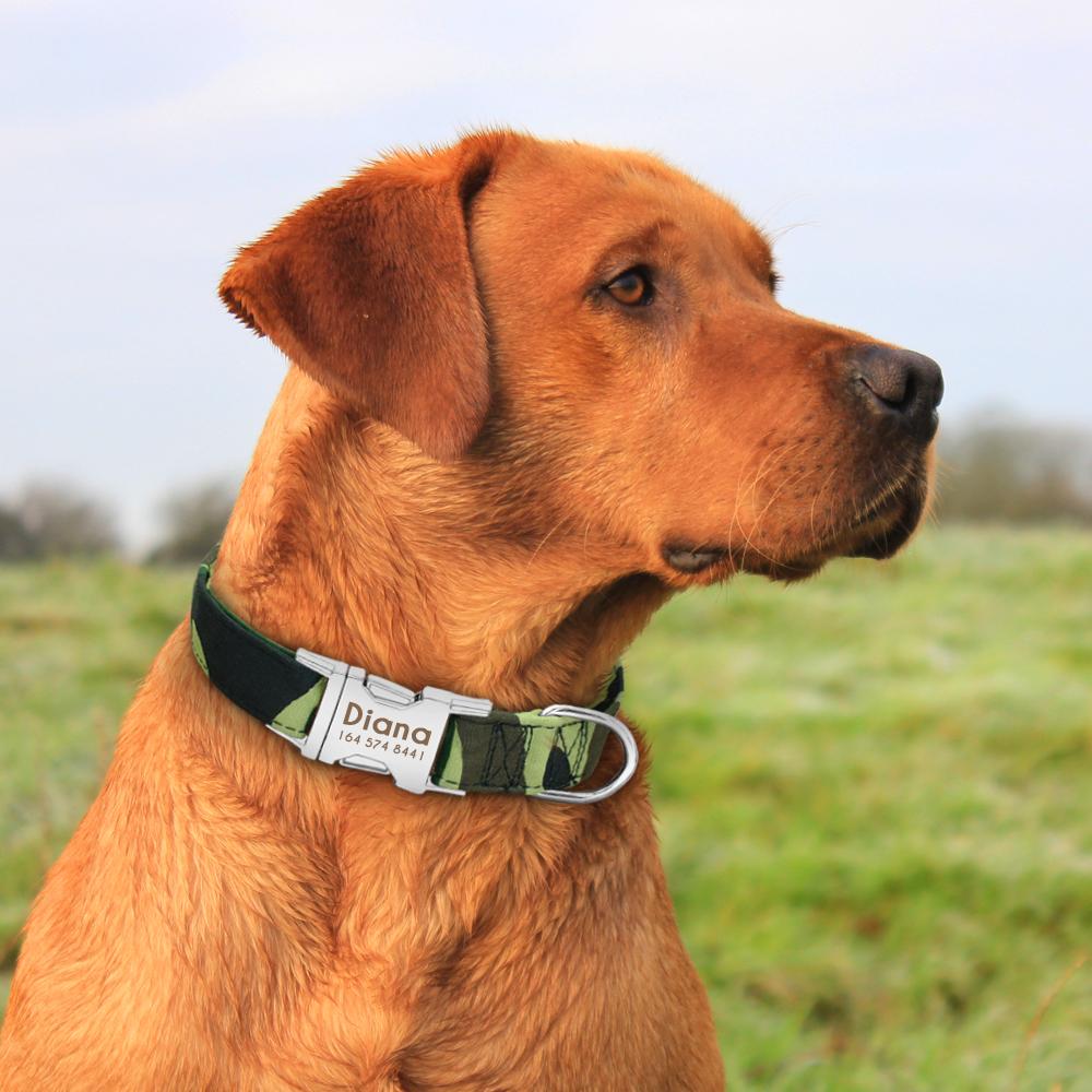 Collar de perro de Nylon personalizado con placa de identificación grabada 26
