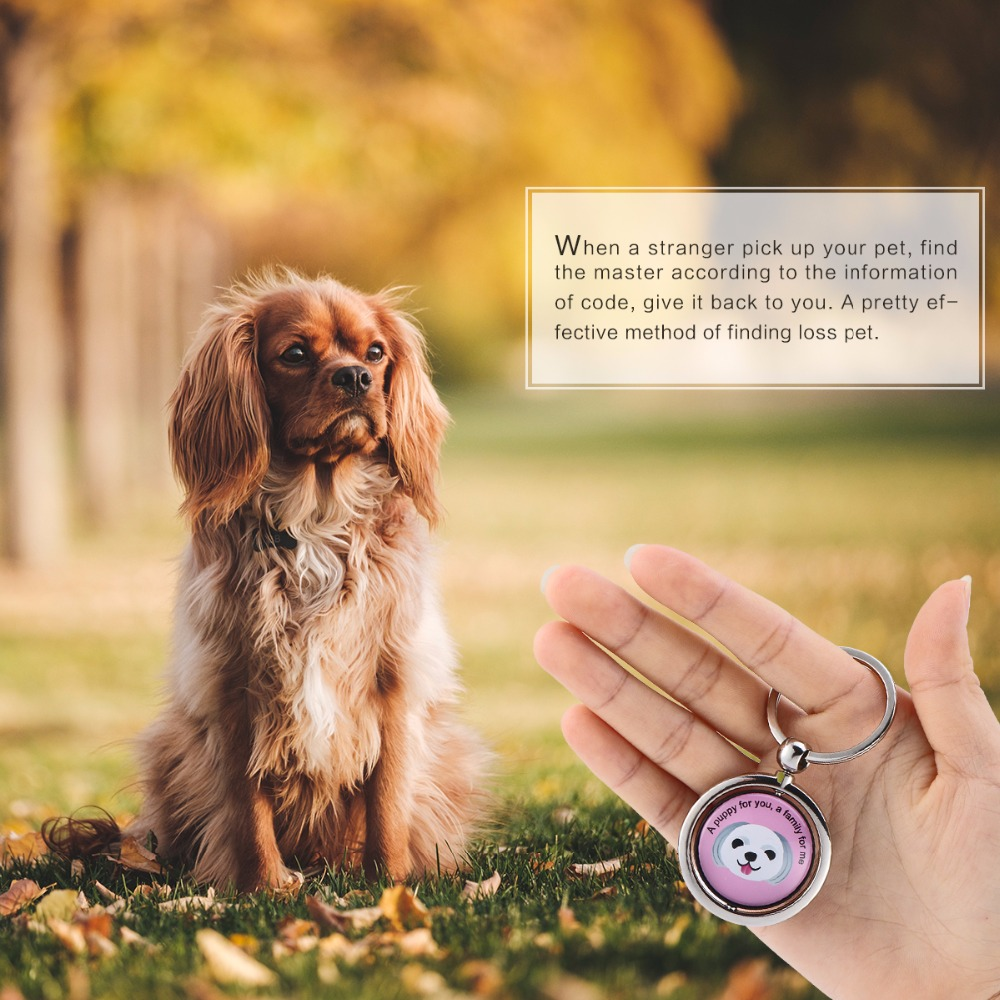 ABEDOE Portable Intelligent Anti Lost Code Keychain Artificial Crystal Rotatable Find Master Pet Decoration for Pet Dog Cat