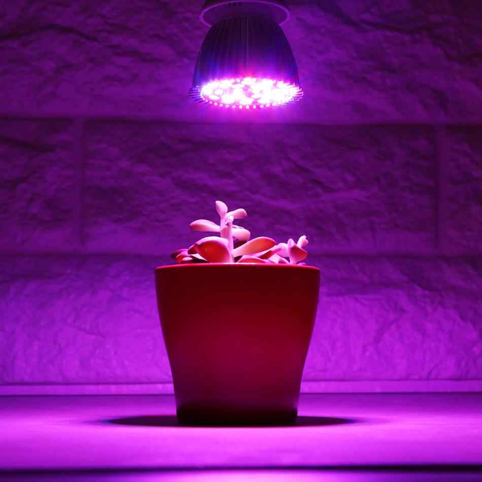 5W Full Spectrum Led Grow Light GU10 Aquarium Growing Grow LED Lamp Bulb for DIY Hydroponics Plant Flower