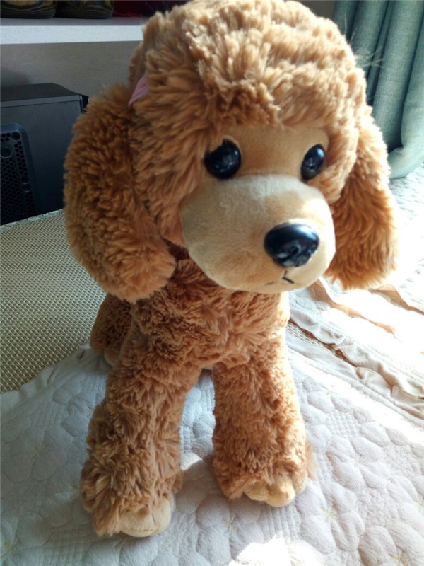 Detail Feedback Questions about Free shipping Cute Dog plush