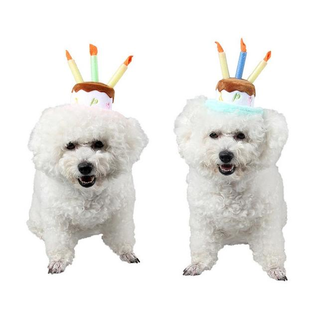 Pet Birthday Hat With Candle Show Home Party Supplies Cute Cat And Dog Happy
