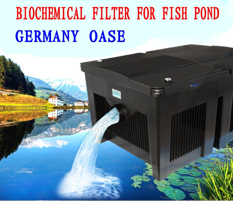Germany oase biosmart 30000 36000 pond filter fish pond for Koi pond filter setup