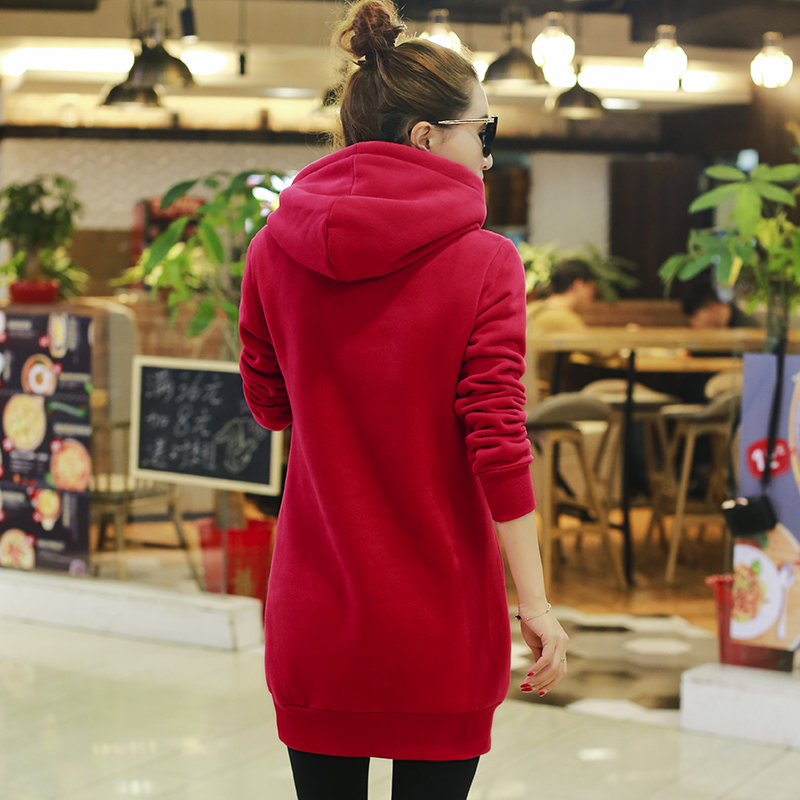 2019 frühling herbst winter trainingsanzug für frauen hoody - Damenbekleidung - Foto 3