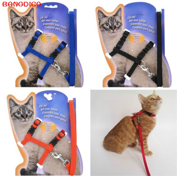 BANGDICA 1 PZ Nylon Pet Dog Cat Harness And Guinzaglio Regolabile Puppy Traction Belt Corda Neck Strap Gattino Halter Vest Collar