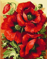 Frameless Picture Painting By Numbers Big Red FlowerHome Decoration For Living Room Hand Unique Gift Picture