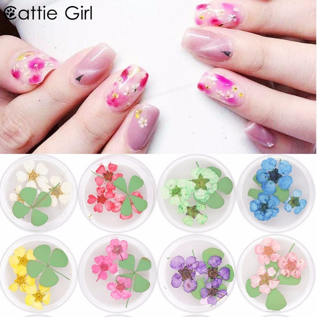 1 Box Mixed Natural Dried Flower 3D Nail Decoration Real Preserved Dry  Flower Nail Art Decorations