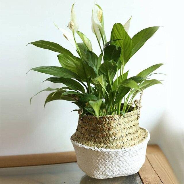 Doreen Caixa Artesanal de Bambu De Armazenamento Seagrass Cestas de Lavanderia Dobrável Cesta De Vime Cesta De Vime Vaso de Flores Cesta de Dobramento