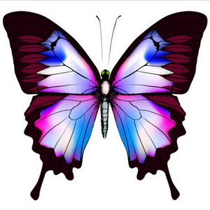 5D Diamond painting,full DIY Diamond Embroidery,Diamond mosaic,Character butterfly Series ,handcrafts,Christmas,home decoration