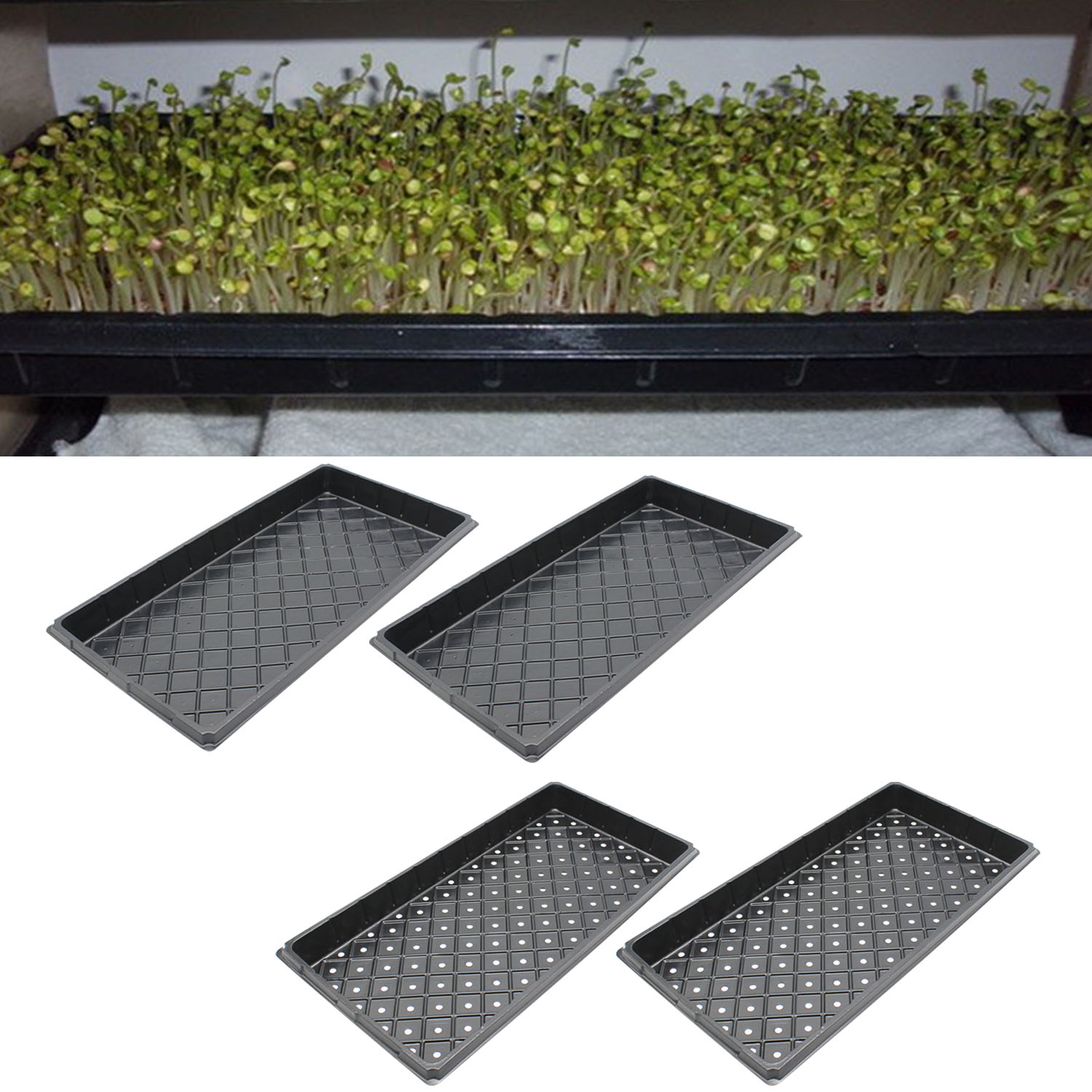 Behogar 2PCS 54x28x5cm Reusable Seedling Seed Starter Growing Trays For Garden Greenhouse Succulent Wheatgrass Microgreens