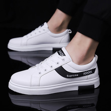 New Spring Low-Up Canvas Board Shoes for Men's Sports Youth Leisure White Shoes