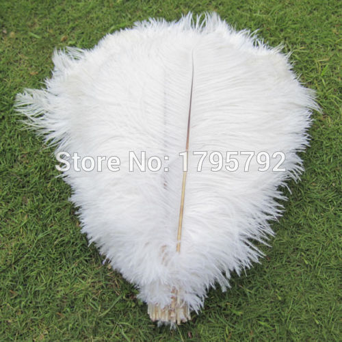 Wholesale 100Pcs 25 30cm White Color Ostrich Feather Wedding party decoration craft dress making manufacturers