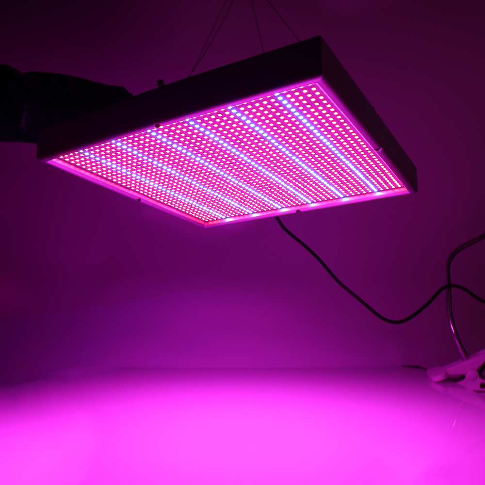 1365 LEDs 120W LED Grow Lights Full Spectrum 410-730nm For Indoor Plants and Flower Phrase, Very High Yield. russian phrase book