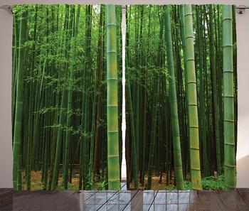 decoración fresca de la sala de estar Cortinas De Bamb Un Bosque De Bamb Extica Visin De Selva