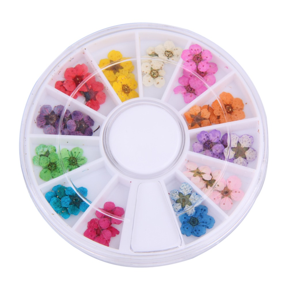 12 Color/Box Nail Art Nature Dry Flowers Set Gel Polish 3D Floral Slices Tips Salon Manicure Decals Decoration Christmas Makeup nature explorer box set