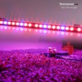 10pcs/lot 54w Waterproof LED Bar Grow Light Red+Blue Indoor Plant Lamp Veg Flower Strip Lamp Hydroponic Lighting Factory Price