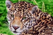 5D Diy Diamond Painting Cross Stitch Highly Alert Leopard Needlework Embroidery Full Round Mosaic Decoration Resin Kits