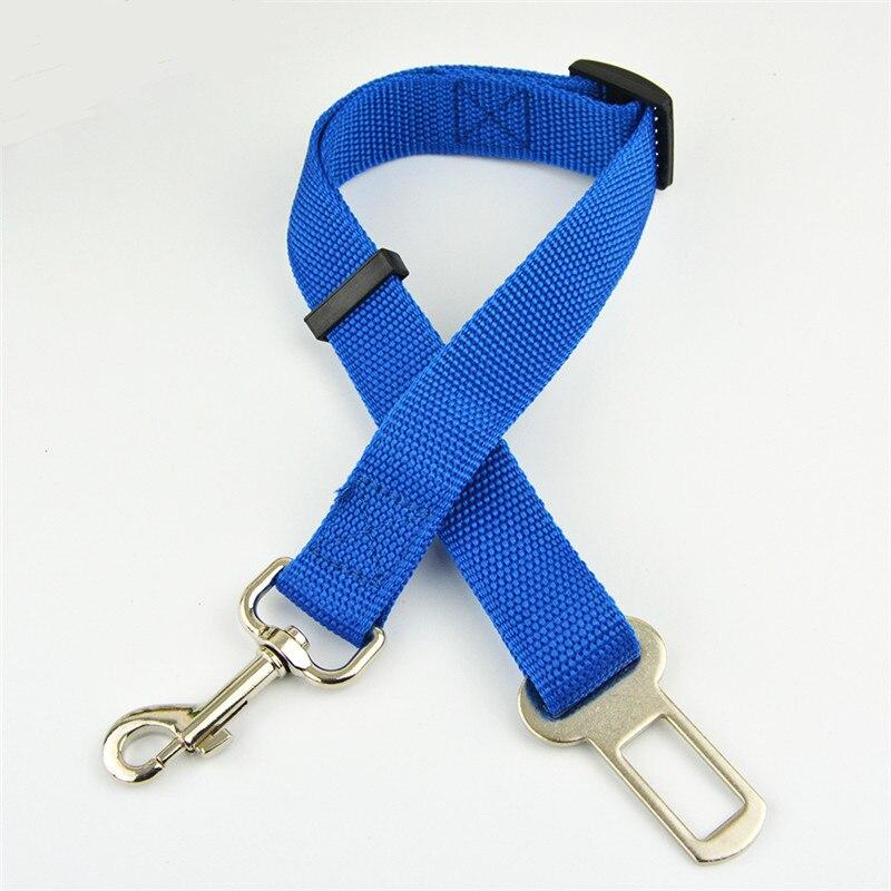blueclsh
