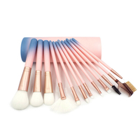 12PCS Makeup Brushes Set Foundation Powder Eyeshadow Pink Brush Cosmetic Beauty Make Up Tools Case Holder