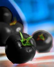 Black Tomato seeds 120PCS Rare Tomatoes seeds SALE Home Garden Plants High Germination Rate