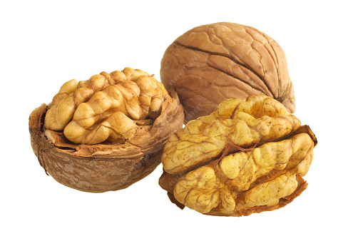 100% true Walnut seed, Nutrient Nuts tree seeds Organic Fruit seeds for home garden Healthy Food plants 1 pcs/pack
