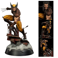 X Men Dowin Wolverine 1/6 Scale statue Figure PVC Action Figure Collectable Model Toy Doll Gift