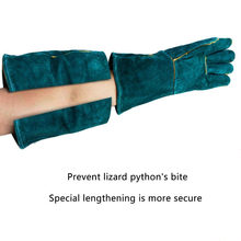 Bite Proof Wearable Animal Handling Protective Gloves Comfortable Durable Anti-grab Home Thickened Firm Dog Cat Scratch Falcon(China)