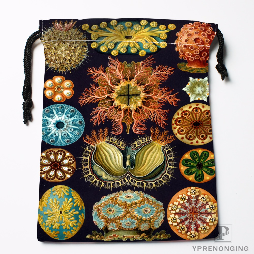 Custom Haeckel Sea Shell Drawstring Bags Travel Storage Mini Pouch Swim Hiking Toy Bag Size 18x22cm#0412-04-24