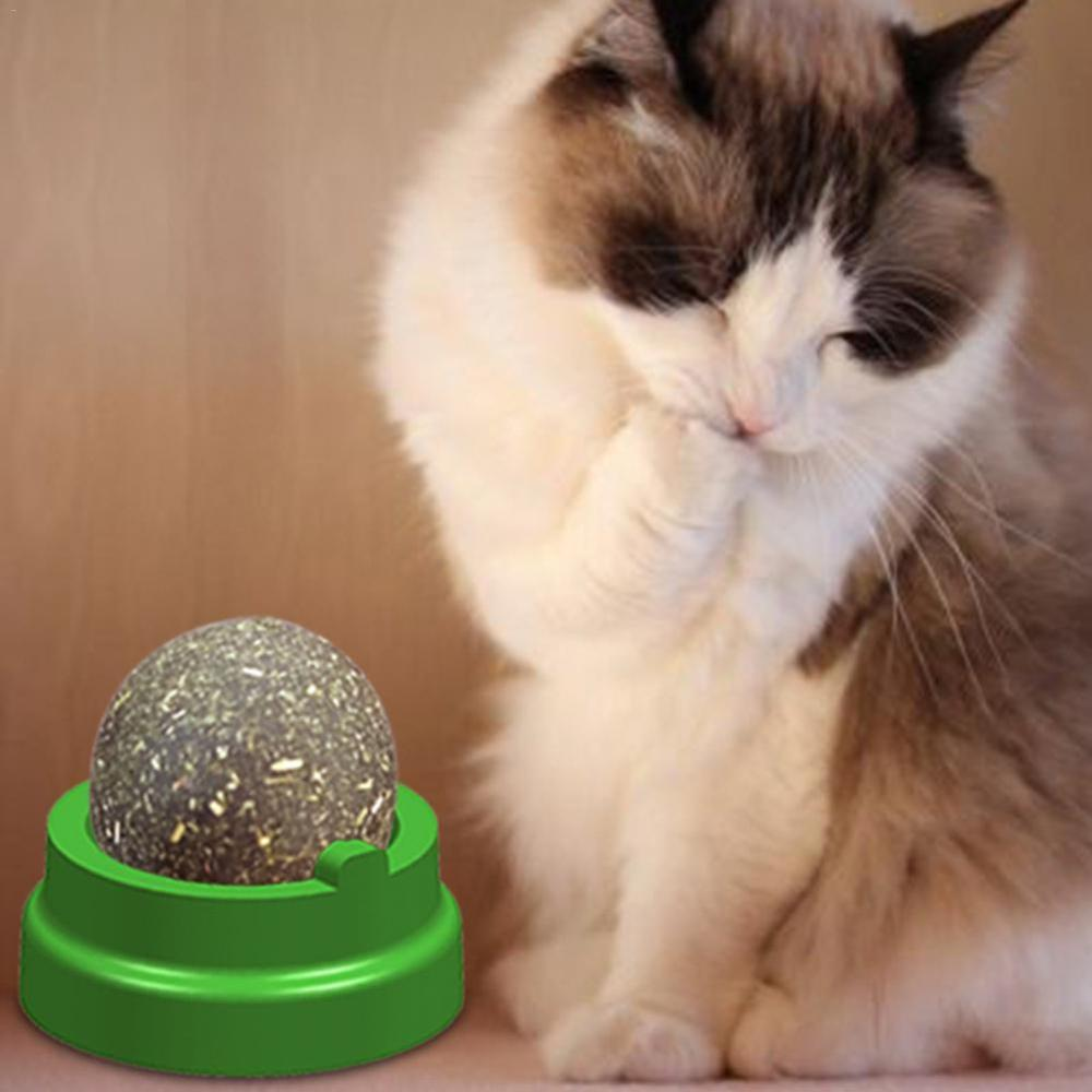 Pet Catnip Toys Ball For Cat Pure Natural Mint Leaf Ball Rotating Puzzle Balls Pet Cat Interactive Training Chew And Lick Toys in Cat Toys from Home Garden