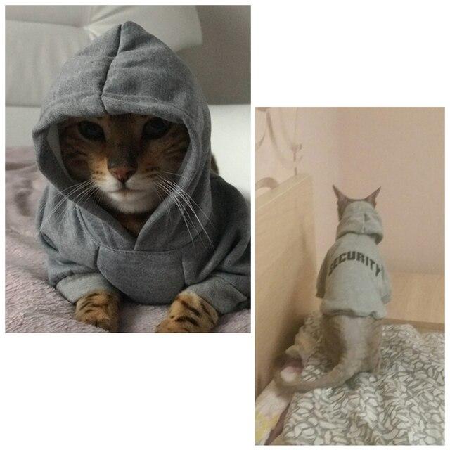 Cat Warm Hoodies  1
