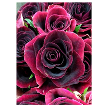 MOYOU 5D Diy Diamond Painting Cartoon Red Rose flowers Cross Stitch Square Diamond Mosaic Diamond Embroidery handcrafts недорого