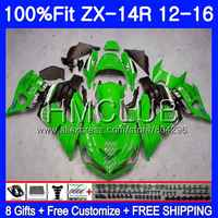 Injection Green black For KAWASAKI NINJA ZX 14R ZX14R 12 11 13 14 15 16 50HM.2 ZZR1400 ZX-14R 2011 2012 2013 2014 2015 Fairing