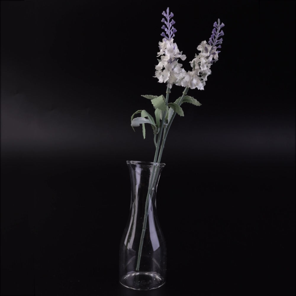 Super Deal Stylish Creative Home Decor Transparent Glass Hydroponic Vase Modern Fashion Dining Table Office Small